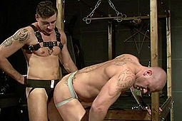 Harley (m), Jay in Get Cocky by Macho Guys